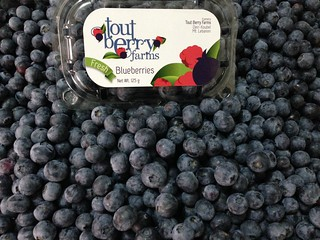 Tout Berry Farms Blueberry Package with Loose Fruits d May 20, 2015 | by toutberryfarms
