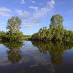 02 Viajefilos en Australia, Kakadu NP 057
