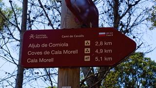 Camì de Cavalls entre Cala d'Algaiarens i Cala Fontanelles   by Franco Vannini