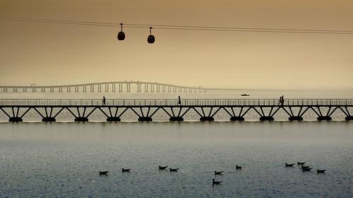 morning bridge sunset sky portugal water silhouette architecture modern sunrise river walking dawn evening boat expo dusk path contemporary lisbon seagull floating tejo tagus pietro parquedasnações vascodagama faccioli pietrofaccioli