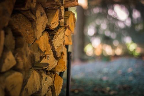 Day 118 - Firewood | by Ravi_Shah