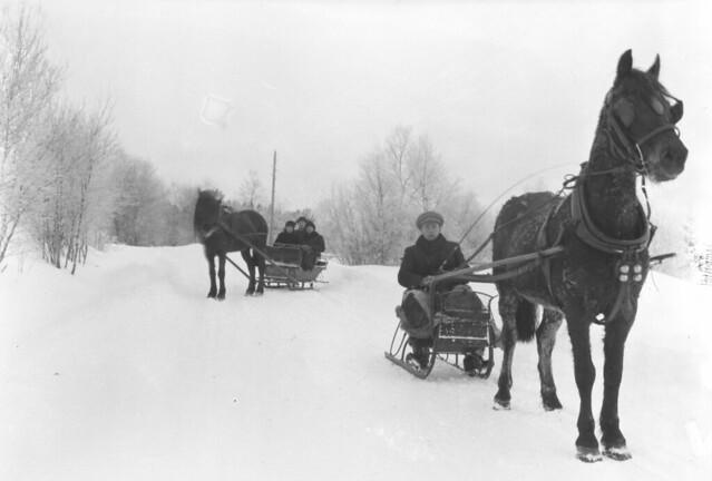 På kanefart i vinterland (ca. 1910)