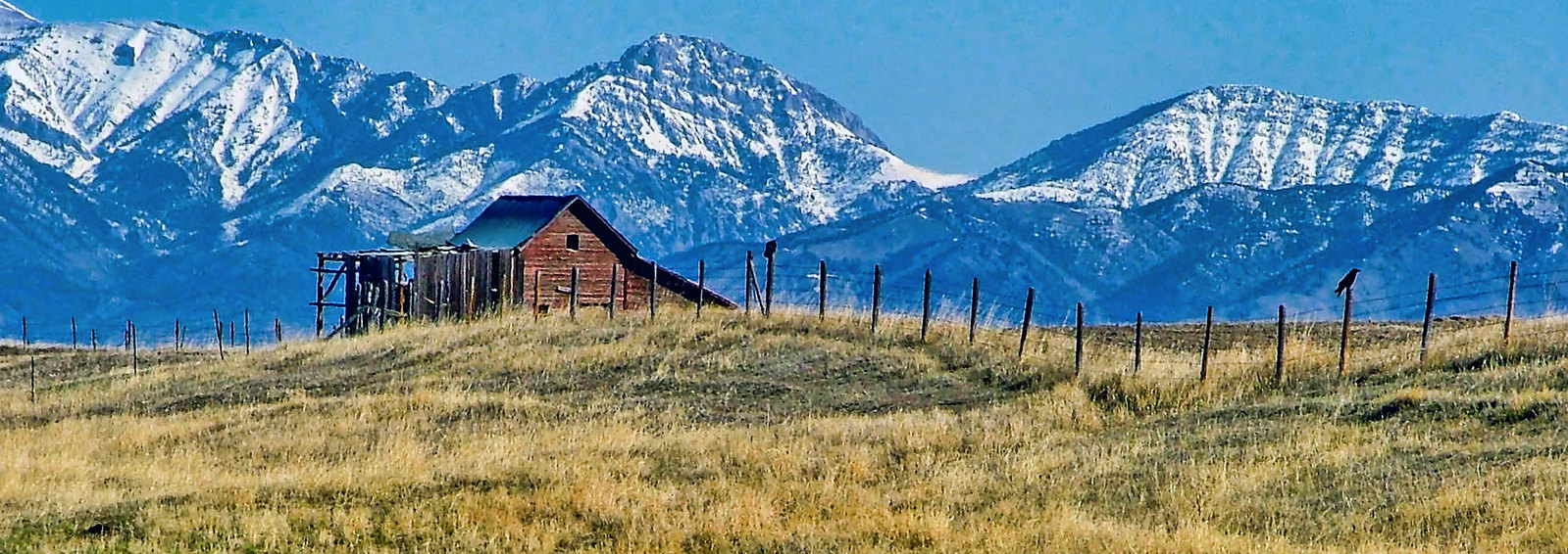 Bridger Mountains Barn