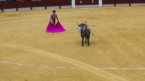 corrida | by bcdef