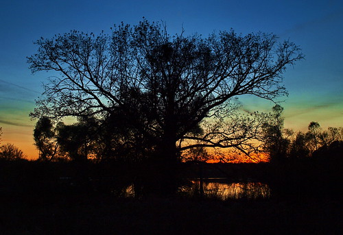 sunset lake michigan logan kentcounty cloudsstormssunsetssunrises