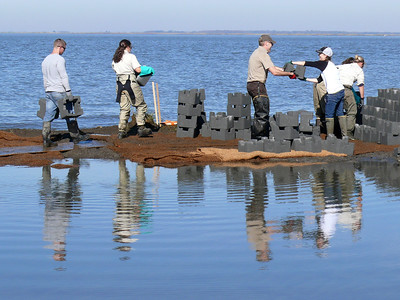 people standing on shore surrounded by water making oyster castles