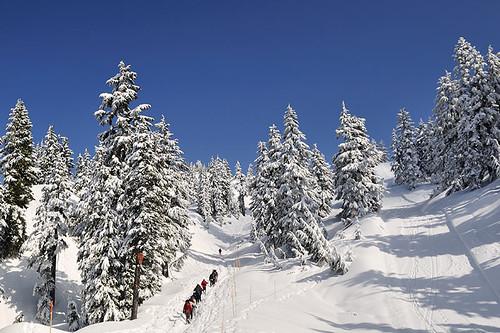 Mount Seymour, Ski Resort, North Vancouver BC, British Columbia