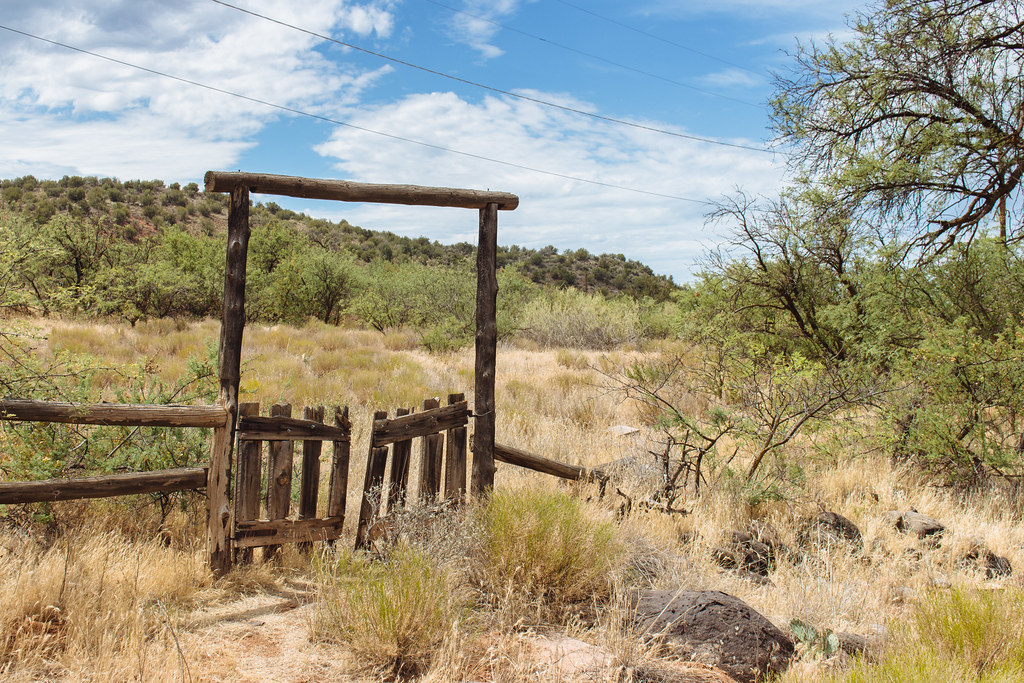 An open gate on a wooden fence leads into thick grass brush and trees on a hill