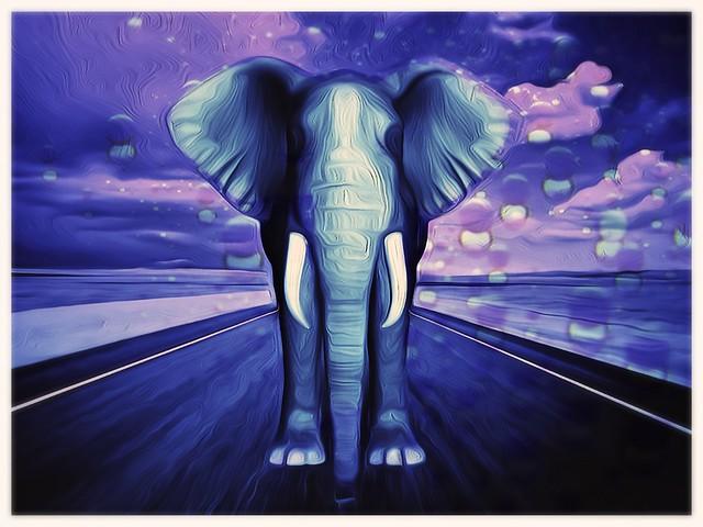 elephantio