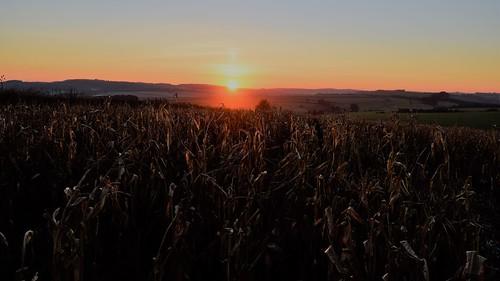 sunset sky field farmland