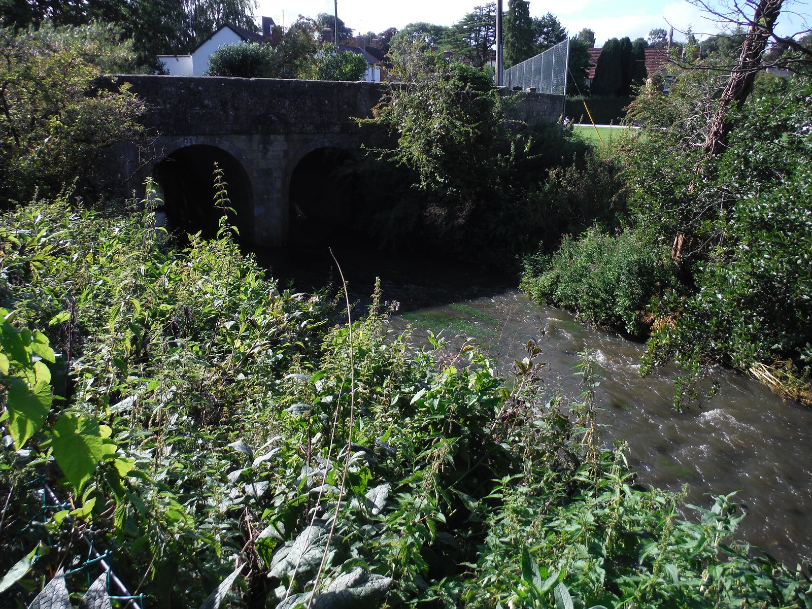 Bridge over The Nadder, Tisbury SWC Walk 248 Tisbury Circular via Hindon