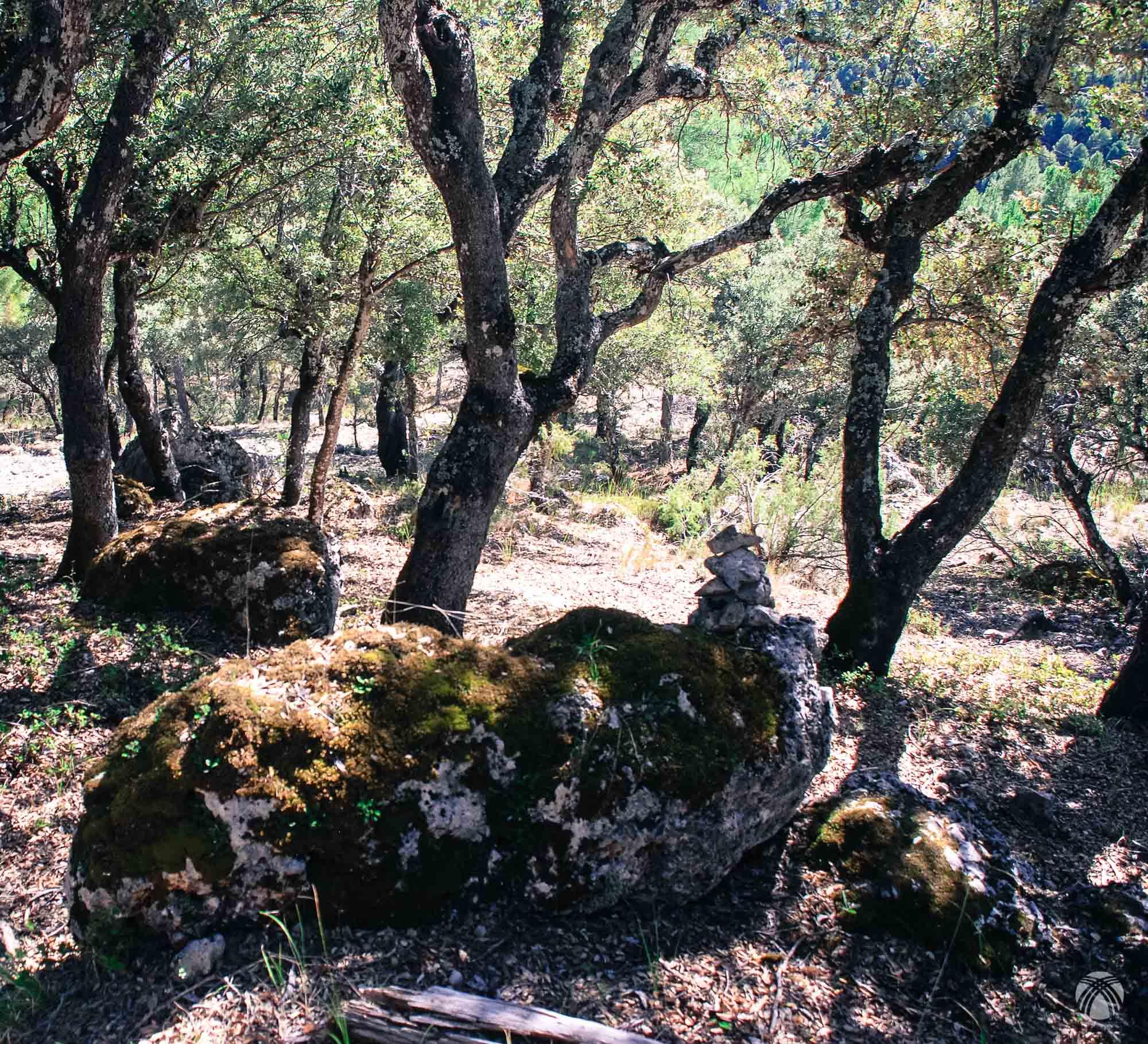 Cercanías del cortijo de la Fresnedilla