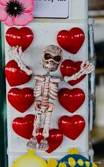 Loving skeleton