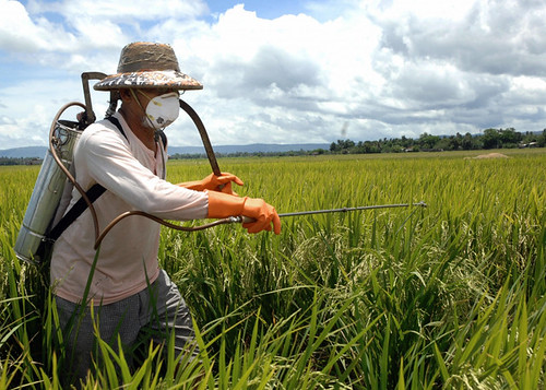 正確的農藥施用應該有完整的防護措施。圖片來源:Day Donaldson (CC BY 2.0)。 | by TEIA - 台灣環境資訊協會