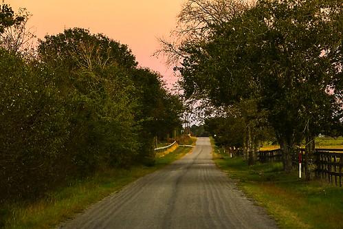 texas wallercounty josephroad trees sunset dusk road lane wyojones np