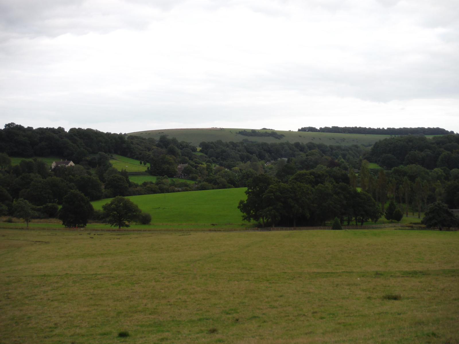 Ansty Village and Swallowcliffe Down SWC Walk 251 Tisbury Circular via Ludwell and Berwick St. John