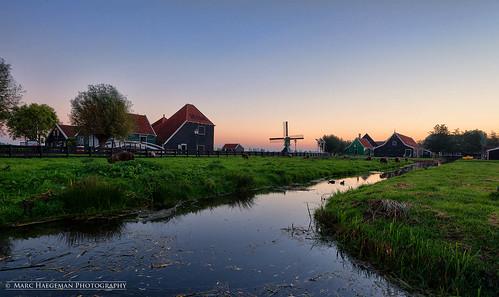 morning holland heritage water amsterdam sunrise dawn mood sheep outdoor nederland thenetherlands windmills pastoral zaanseschans zaandijk erfgoed nikond800 nikon1635mmf4afsvrged marchaegemanphotography