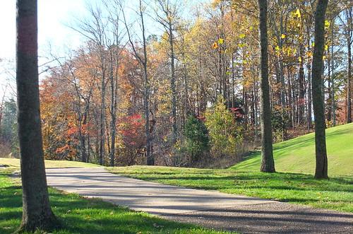 autumn fall virginia bikeride