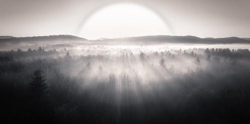 sun foliage dji backyard fog phantom4 vermont landscape aerial williston unitedstates us
