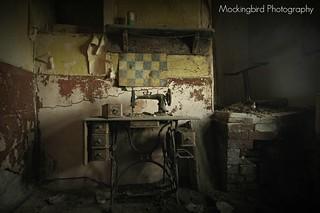5   by Mockingbird Photographic