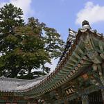 07 Corea del Sur, Haeinsa 42
