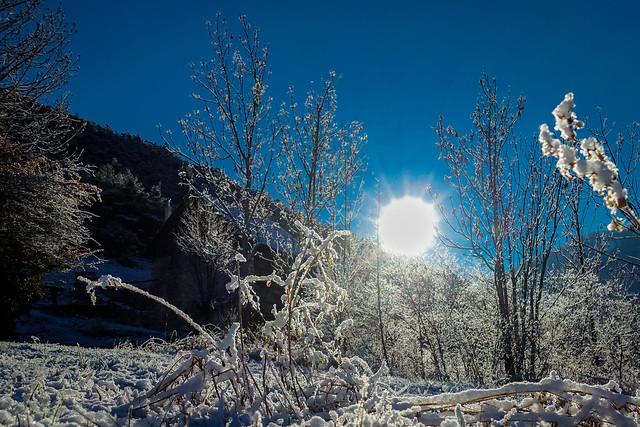 matin glacial