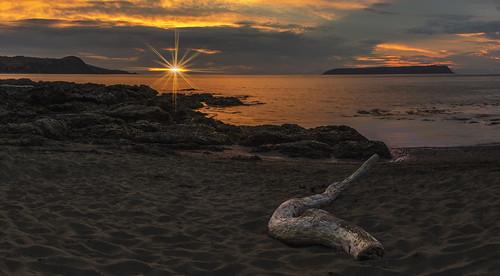 new sunset seascape beach weather clouds sunrise landscape island coast vibrant driftwood zealand wellington coastline mana plimmerton porirua beachscape