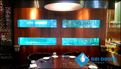 Hồ hải sản tại ks Park Hyatt Saigon | by Hồ cá kiểng Đại Dương