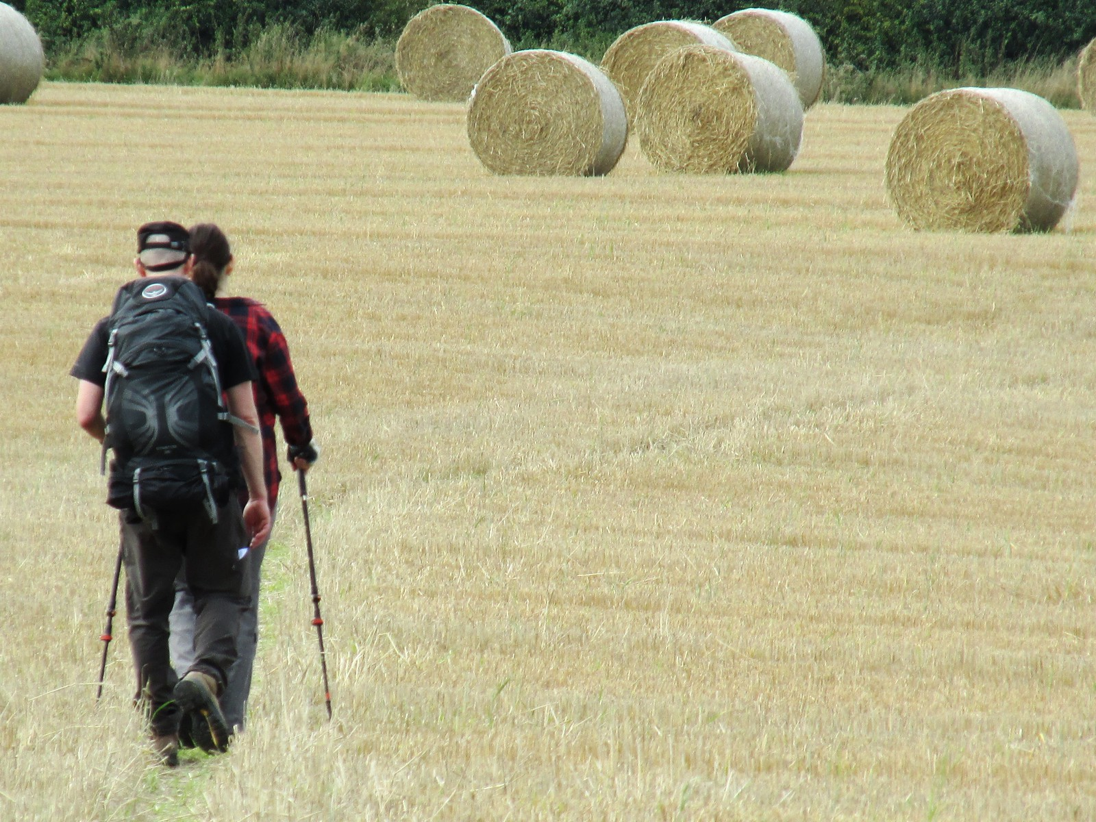 August 29, 2015: Lewes to Seaford Ramblers and hay bales