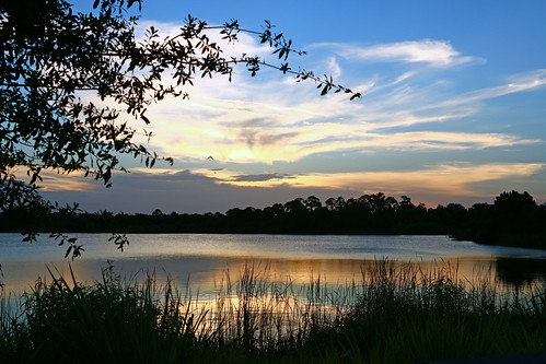 blue trees sunset sky sun water grass clouds pond florida bluesky preserve fortpierce georgelestrange