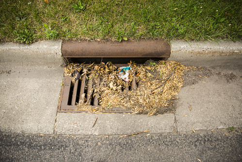 StormDrain-with-leaves-gargabe | by MN Pollution Control Agency