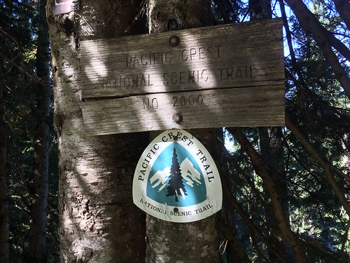 PCT: Day 156