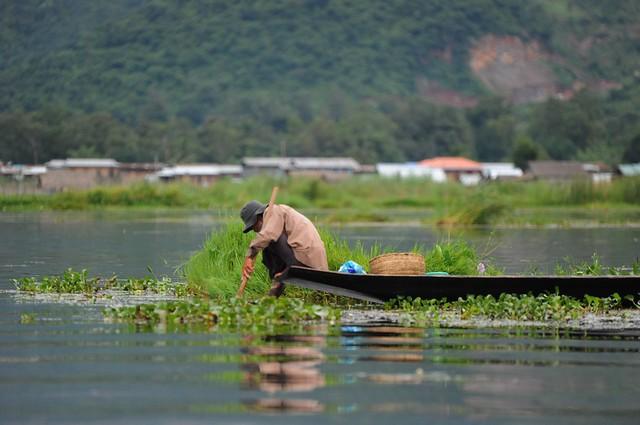 Inle lake, Myanmar D700 847