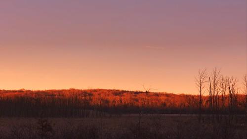 sunset newjersey nj greatswamp greatswampnationalwildliferefuge hardingtownship greatswampnwr leeshill
