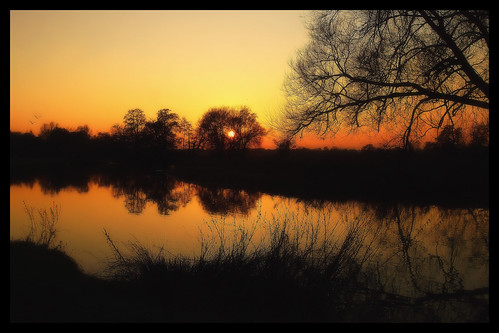 sunset river riverwey surrey wisley water sky silhouette tree nature outside orange yellow black