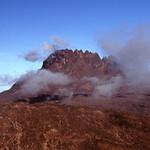Út, 11/24/2009 - 18:31 - Kilimanjaro