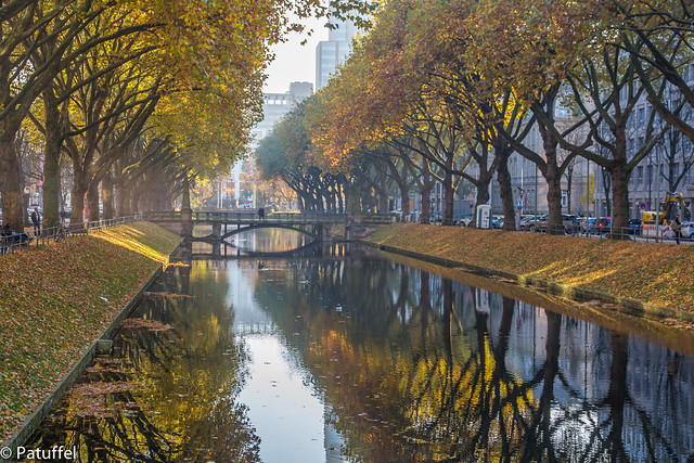 Düsseldorf Kö in Autumn