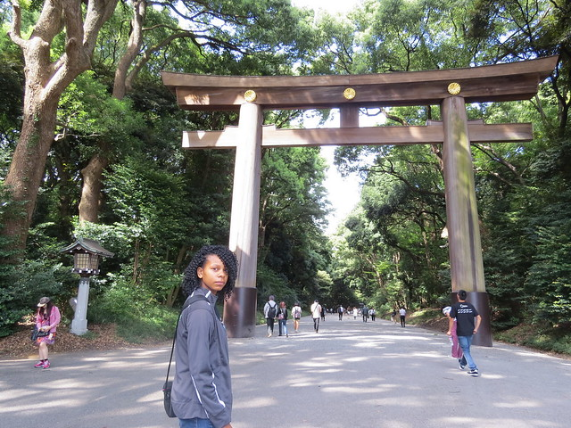 Main Entrance to the Meiji Shrine