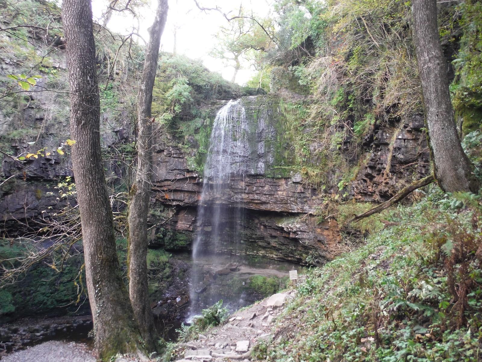First Sight of Sgwd Henrhyd SWC Walk 280 Henrhyd Falls - Sgwd Henrhyd (Craig y Nos Circular)