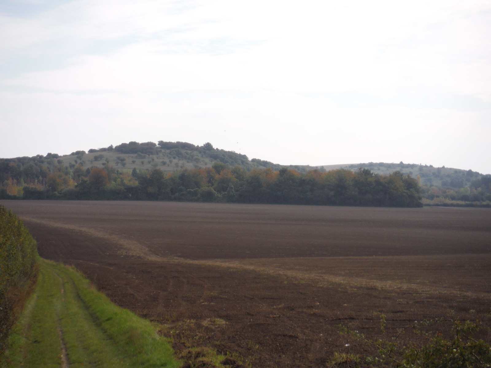 Warden and Galley Hills, from route of Shortcut I SWC Walk 229 Leagrave to Harlington