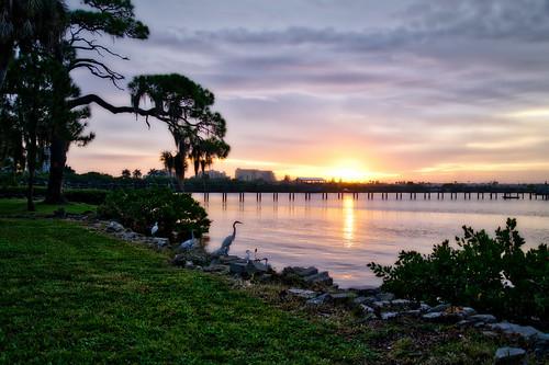 sky sun reflection water birds clouds sunrise pier us unitedstates florida urbanexploration palmetto landscapephotography manateecounty sonyalpha