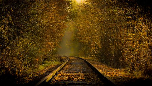 The Autumn way