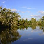 02 Viajefilos en Australia, Kakadu NP 086