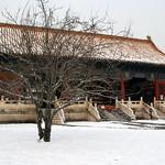 CHINA-2011_0955