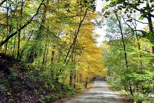 autumn countryroad usa colors october 18250mmf3563dcosmacrohsm canoneosrebelt5i michigan trees