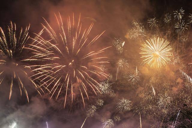 Fireworks/Fuegos artificiales