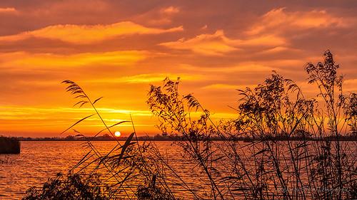 sky sun water sunrise groningen lucht leek drenthe leekstermeer zonsopkomst gemeenteleek groningerwesterkwartier reinasmallenbroek
