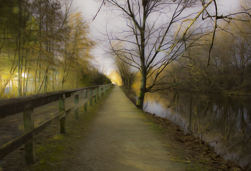 county new trees light people reflection nature water night photoshop altered canon dark walking landscape canal photo paint december alone 26 path no south north nj dec niece driveway filter oil jersey 365 tow current 42 lumber facing lambertville 2015 36542 hunterdon 122615 261215