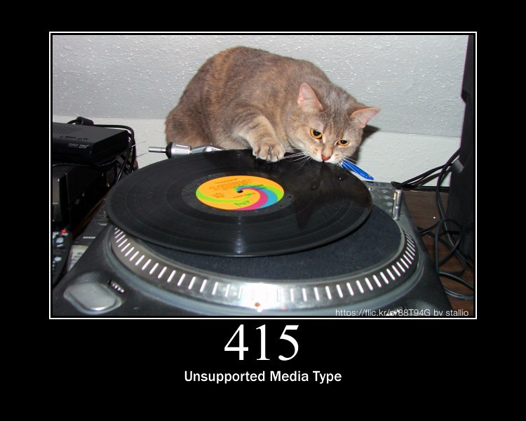 415 - Unsupported Media Type | The request entity has a medi\u2026 | Flickr
