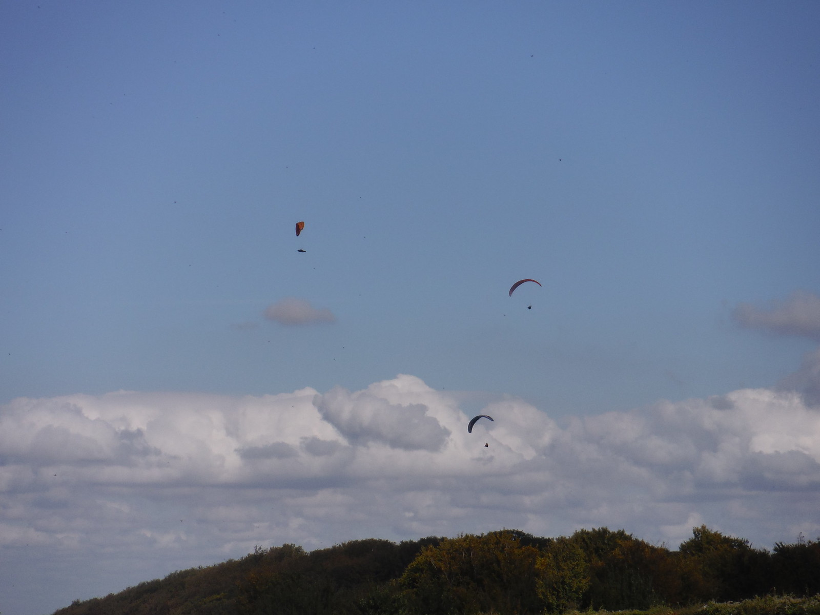 Gliders over Sharpenhoe Clappers SWC Walk 230 Harlington to Flitwick